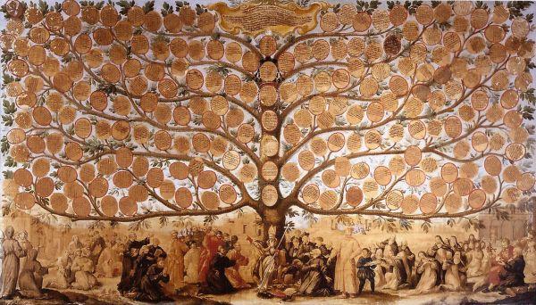 albero-domenicano-san-marco